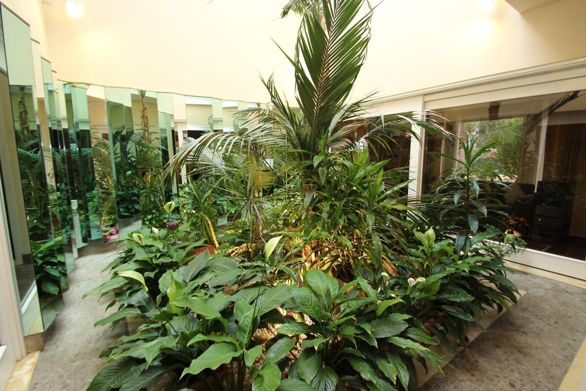 Villa Palmera Atrium Garden