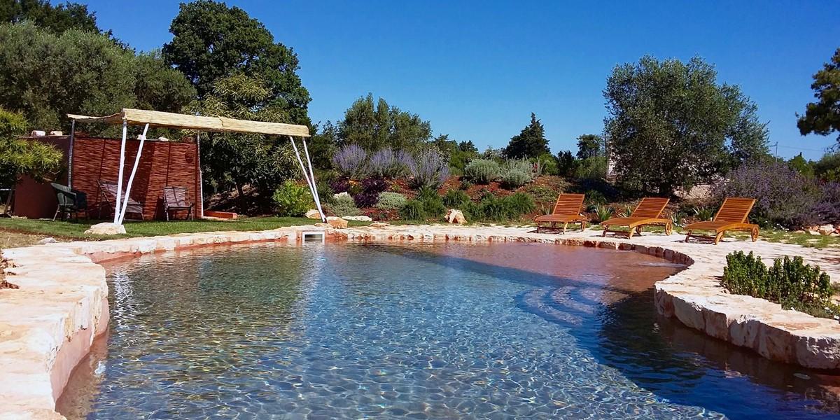 Terra Madre Pool 2