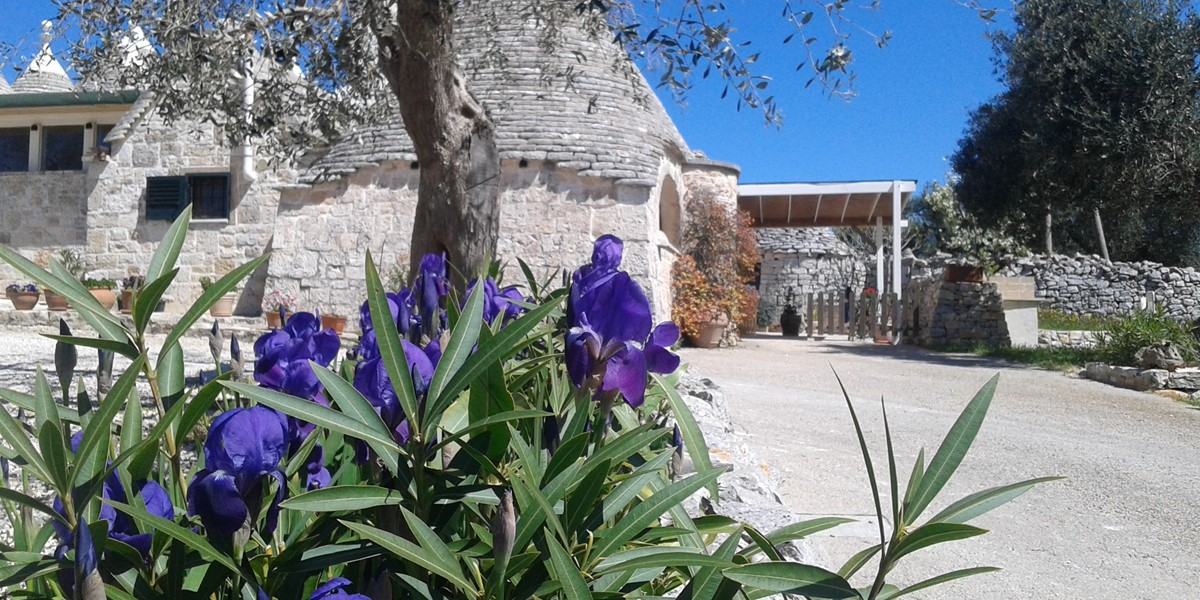 Puglia Holiday Rentals Trullo 1C