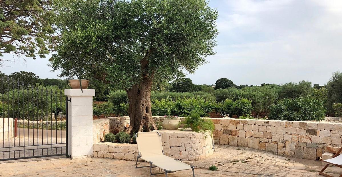Puglia Holiday Rentals Almond Apt Outside 1