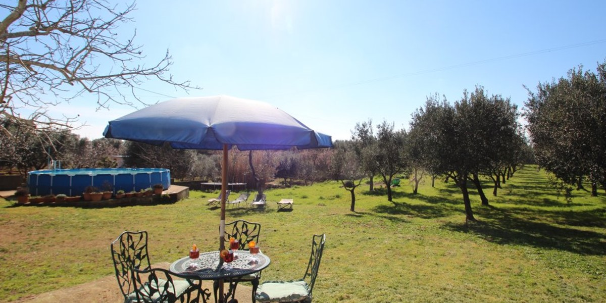 Casa Di Nonna Pool And Olive Grove
