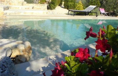 Pool from foilage.JPG