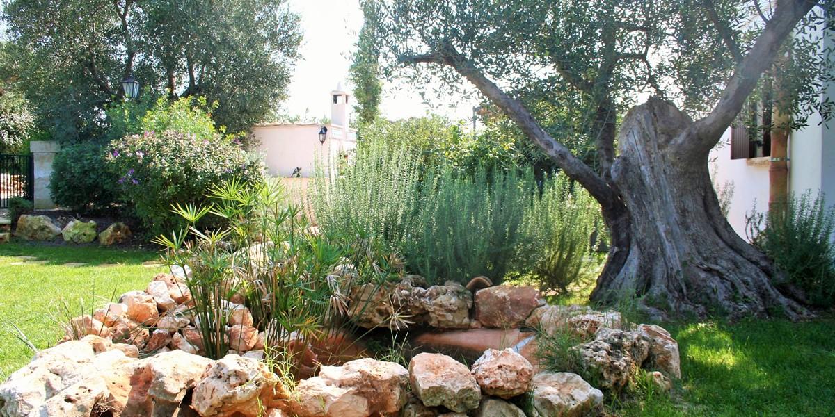 Villa Sessana Garden